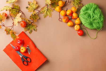 EASY DIY bow hairpin made of autumn seeasonal decor. Set of creativity. Children's creativity. Felt, scissors, decorative fruit and leaves. Handmade for girls, fall holiday decor for party