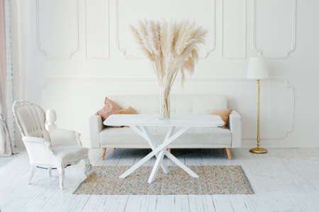 Stylish Scandinavian modern white cozy eco interior in minimalist style. Modern home decor with Pampas grass in vase. Open space. Monochrome, copy space