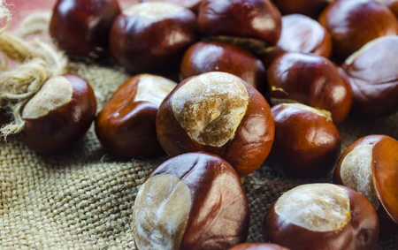 horse chestnut seed: many chestnuts close-up on a table in the autumn Stock Photo