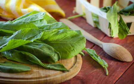 Fresh organic green sorrel on the kitchen board