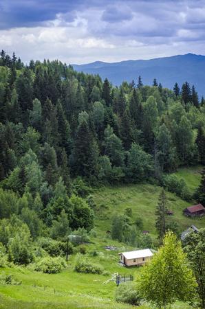 Ukrainian Carpathian mountains and mountain valleys in the summer Stok Fotoğraf