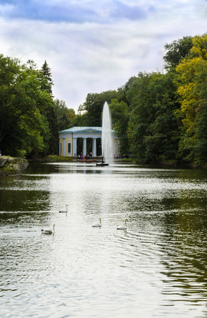 fountain in the form of a snake in the water in the park