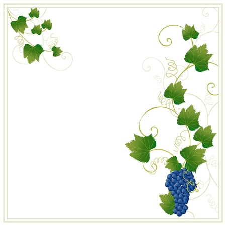 floral frame with grapes Stock Vector - 9892824