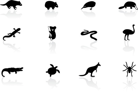 Australian animal icons Vector