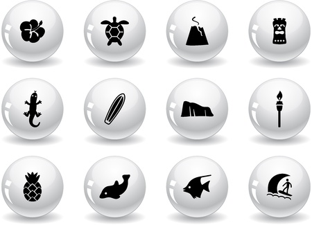 Web buttons, Hawaii icons Vector