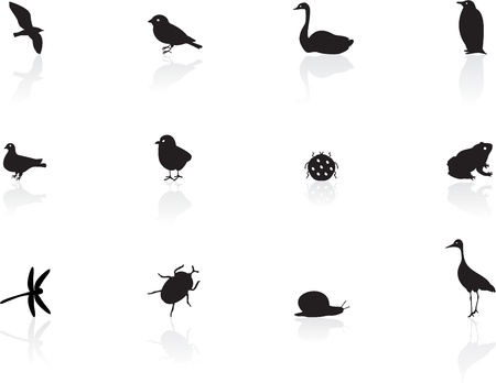 Icons of birds and insects Vector