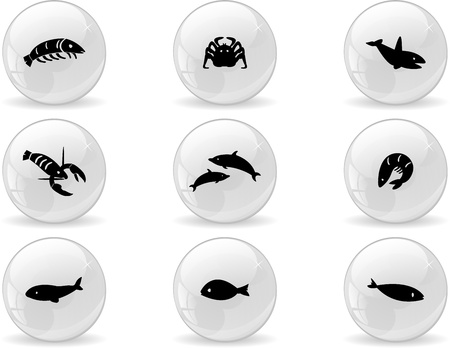 ocean life: Web buttons, ocean life icons  Illustration