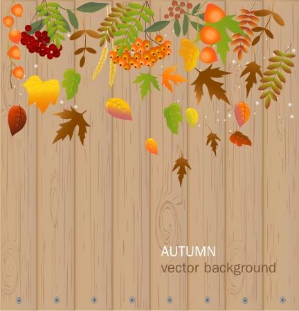 Autumn background Stock Vector - 17446611
