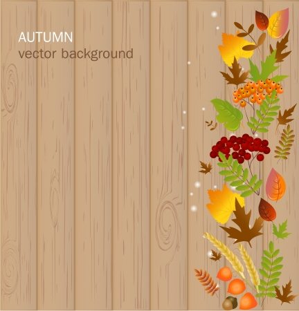 Autumn background Stock Vector - 17446626