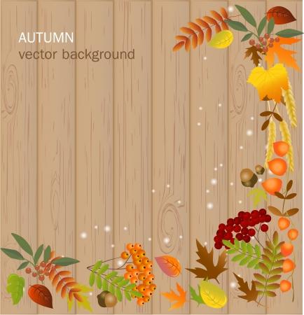 Autumn background Stock Vector - 17446628