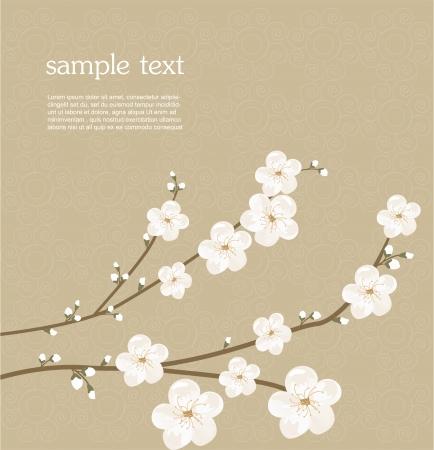 flor cerezo: La flor de cerezo tarjeta