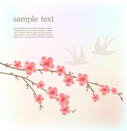 Cherry blossom card Ilustrace