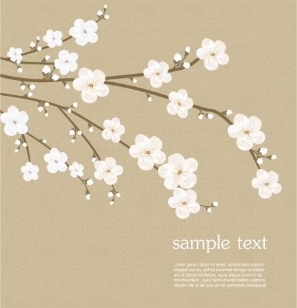 Kirschblüten-Karte