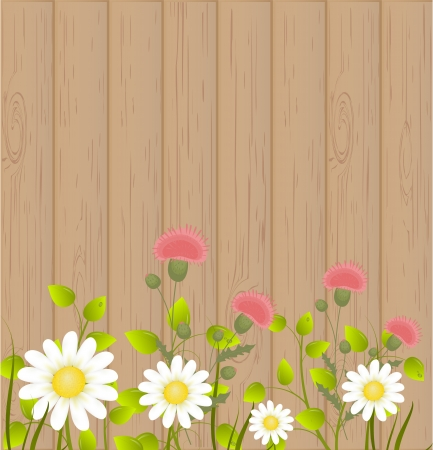 Summer background Stock Vector - 17598896