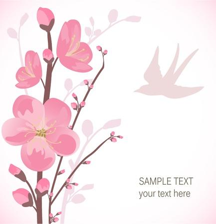 oriental season: Cherry blossom card Illustration