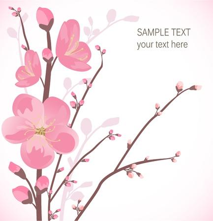flores cerezo: La flor de cerezo tarjeta