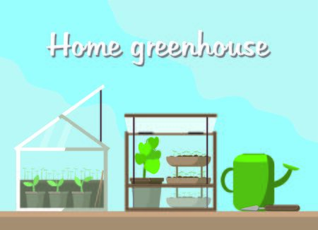 Home mini glass greenhouse for house and balcon. Flat vector illustration. Gardening and plant. Garden and seeds. Take care of green friends. Picture for web site banners and postcards.