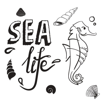 Sea life concept. Seahorse with shell hand drawn vector illustration sketch