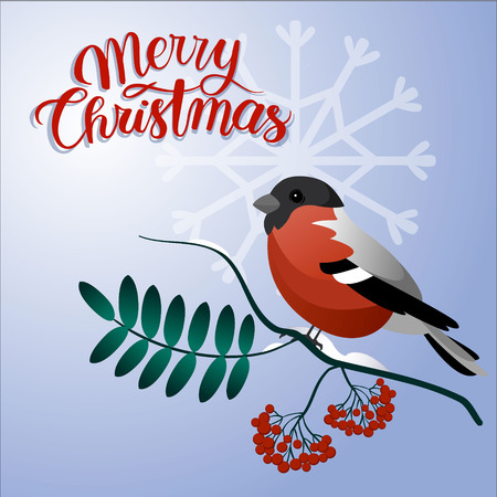Merry christmas postcard. Bullfinch on a branch with christmas decorations