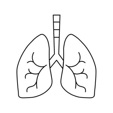 schematic lungs is normal, line icon