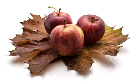 Three whole Gala apples on maple leaves isolated on white background autumn composition  Stock Photo