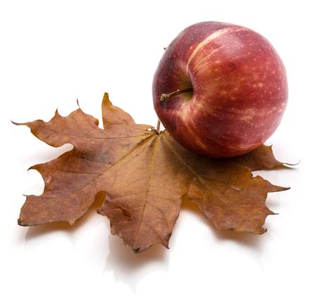 白い背景秋組成分離されたカエデの葉で 1 つ全体ガラアップル