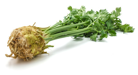 Fresh celery root with leaves isolated on white background one bulb close-up  Stock Photo