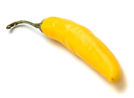 One yellow Chilli isolated on white background