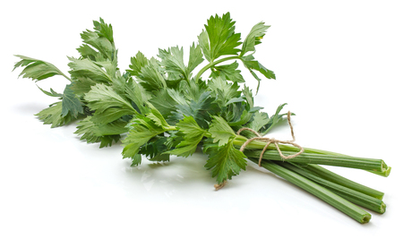 Bunch of fresh celery isolated on white background