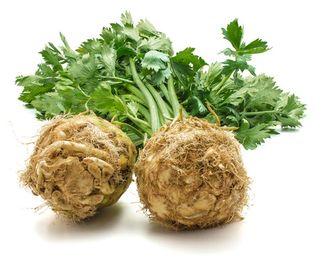 Fresh celery root with leaves isolated on white background two bulbs close-up