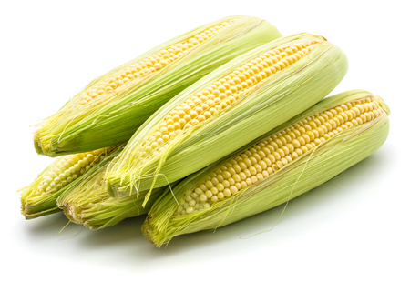 Heap of sweet corn isolated on white background
