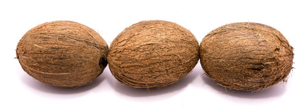 Three whole coconuts in line isolated on white background