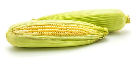 白い背景に隔離された新鮮な甘いトウモロコシの2つの耳 写真素材 - 92664421