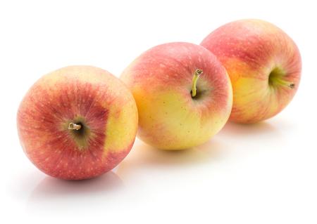 白地赤黄色全体の分離された 3 つのりんご (Evelina 品種)