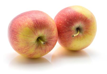 赤茎と白い背景黄色の分離された 2 つのリンゴ (Evelina 品種) 写真素材