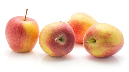 4つのリンゴ(エベリーナ品種)は、茎と白い背景赤黄色に分離 写真素材