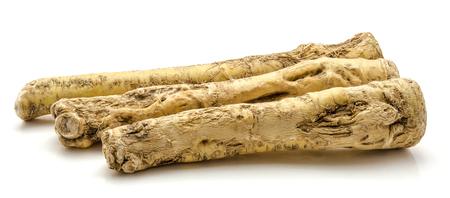 Three fresh horseradish roots isolated on white background