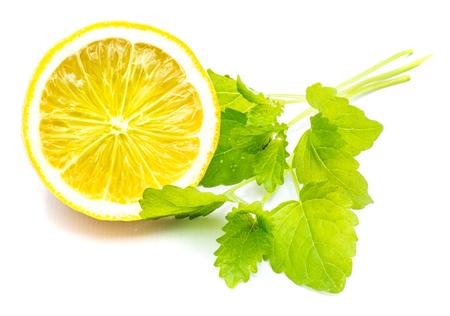 One cross section lemon half and fresh green lemon balm leaves isolated on white background