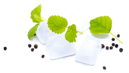 Lemon balm leaves, clear ice cubes and pepper isolated on white background Imagens