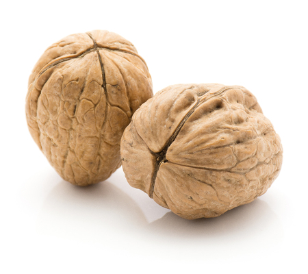 Two unshelled walnuts isolated on white background  写真素材