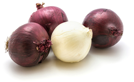 Red and white onion isolated on white background