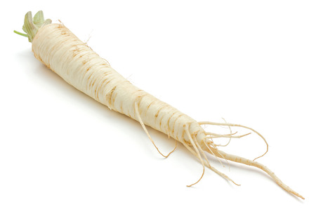 One whole parsley root isolated on white background