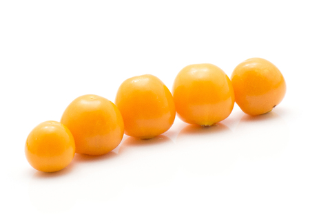 Five physalis orange berries in row isolated on white background