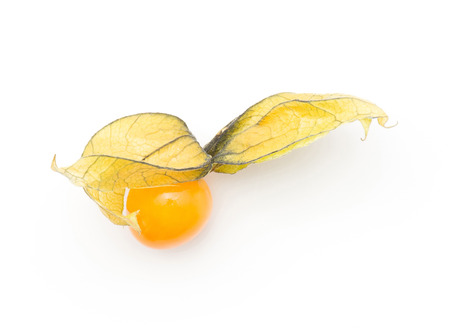 One physalis berry top view isolated on white background