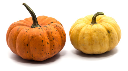 Two whole colorful pumpkins (yellow, orange) isolated on white background
