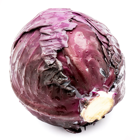 One whole purple cabbage (tilt left, symmetric view of front leaf) isolated on white background  Stock Photo