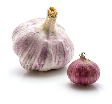 Comparing garlic and solo pearl garlic isolated on white background two whole bulbs collection