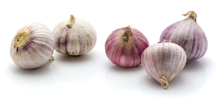 Group of solo garlic isolated on white background  Stock Photo