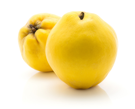 Two yellow quinces isolated on white background ripe raw Stock Photo