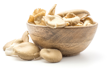 Oyster mushrooms (Pleurotus ostreatus fungus) in a wooden bowl isolated on white background raw uncooked